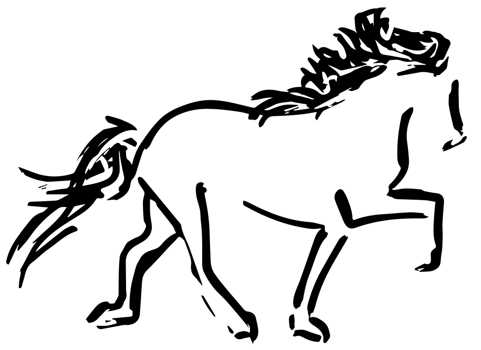Islandpferdehof Blossi